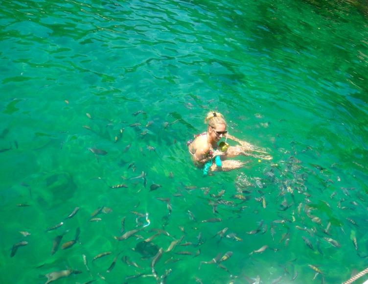 sarinha fishy's